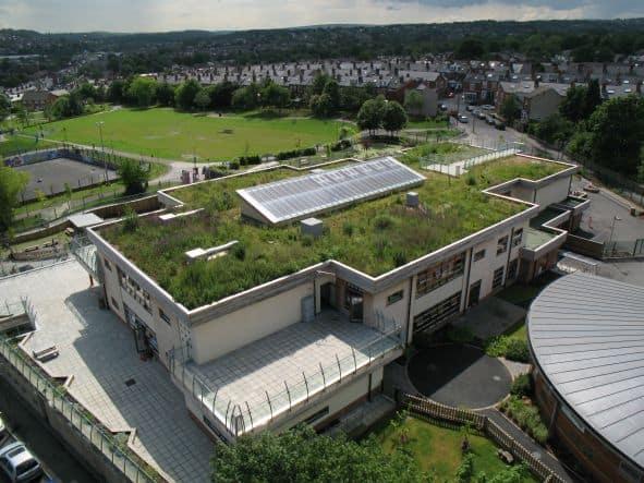 Avantajele unui acoperis verde